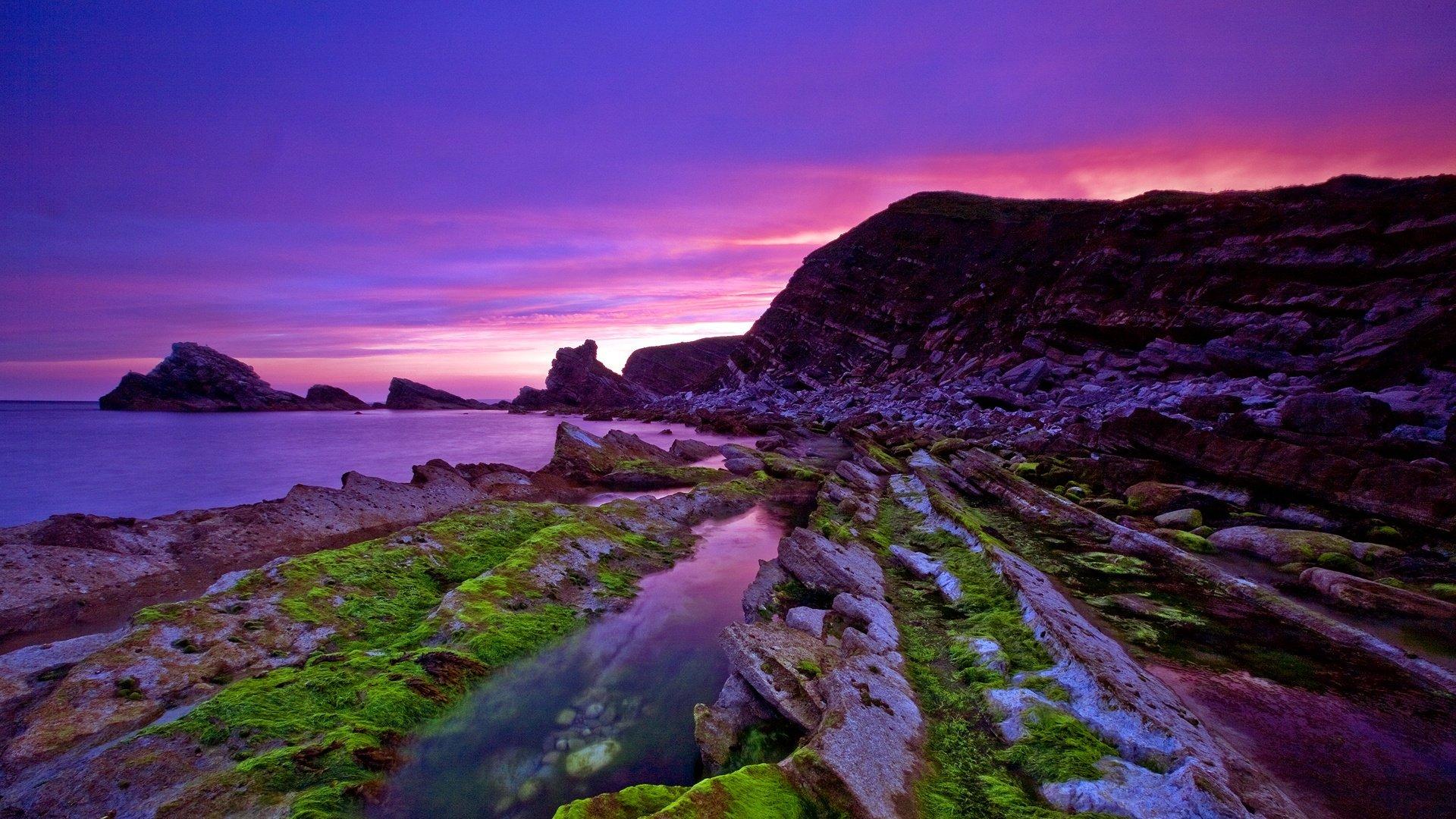 scenic purple