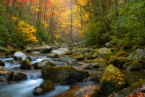 scenic wallpaper autumn fall