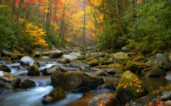 scenic wallpaper autumn fall