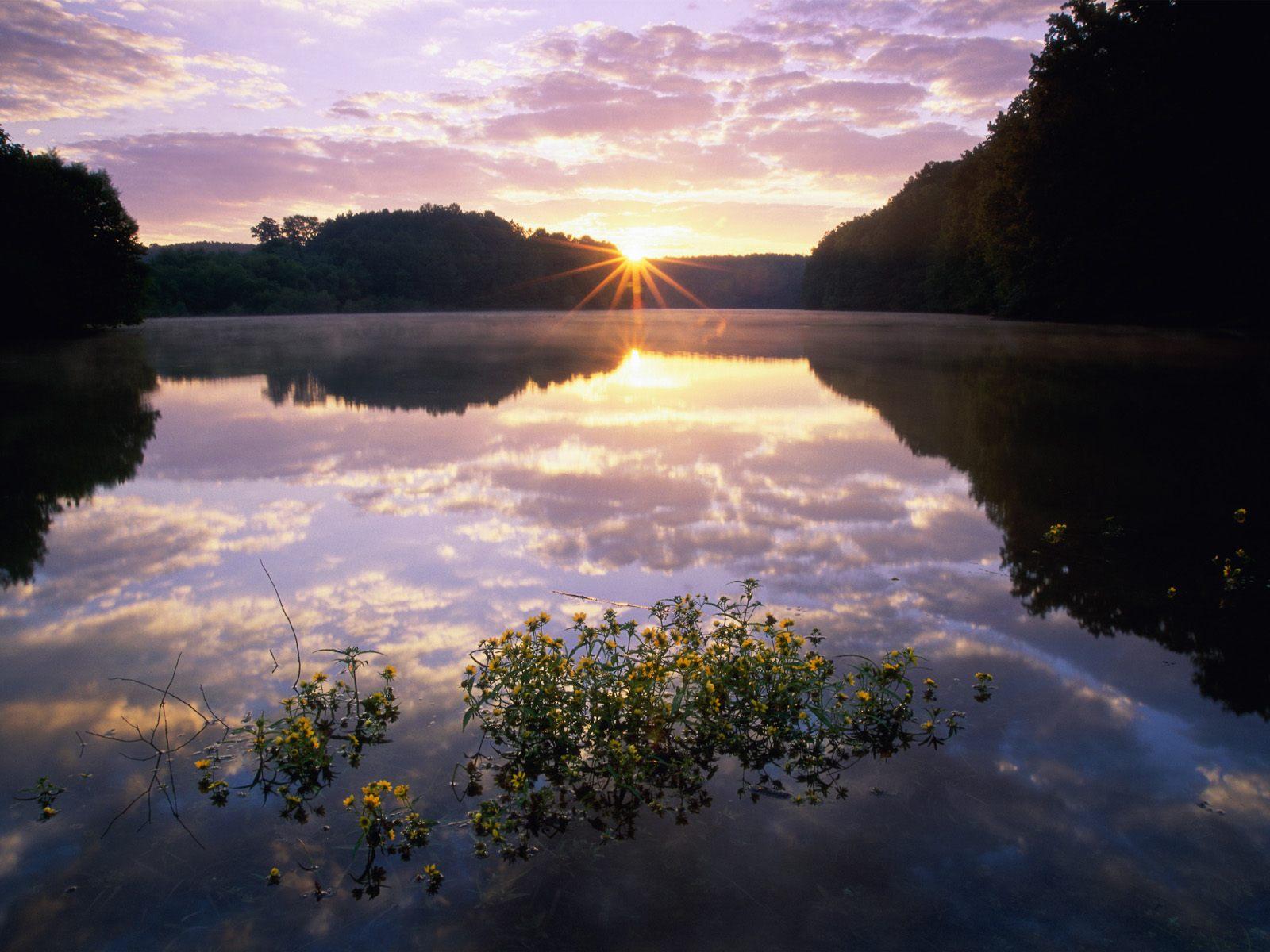 scenic wallpaper sunset