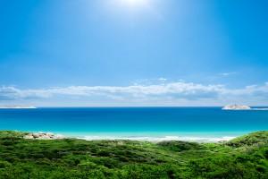 sea coastal beach