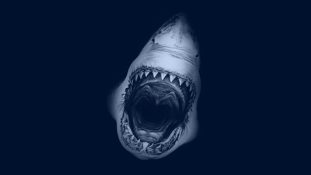 shark screensaver