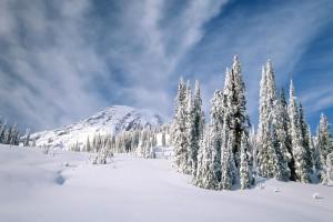 snow wallpaper laptop
