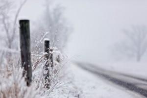 snow wallpaper photography