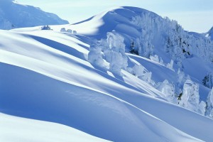 snow wallpaper white
