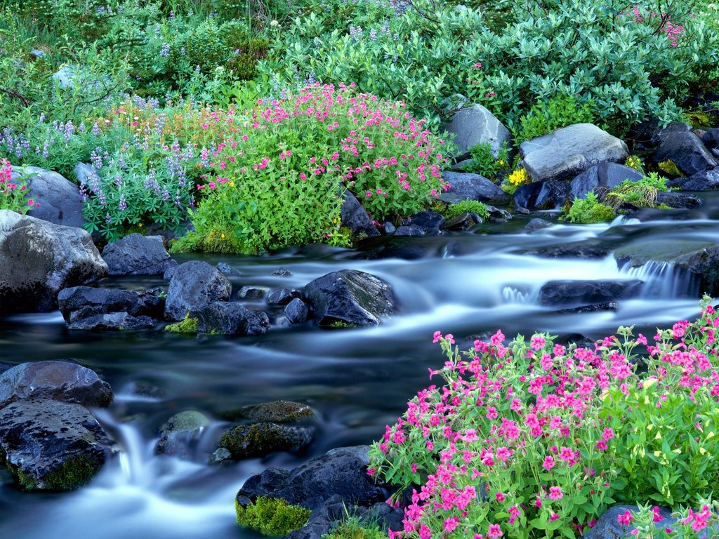 spring wallpaper waterfall