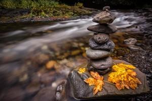 stone wallpaper autumn