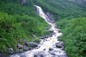stream wallpaper A1