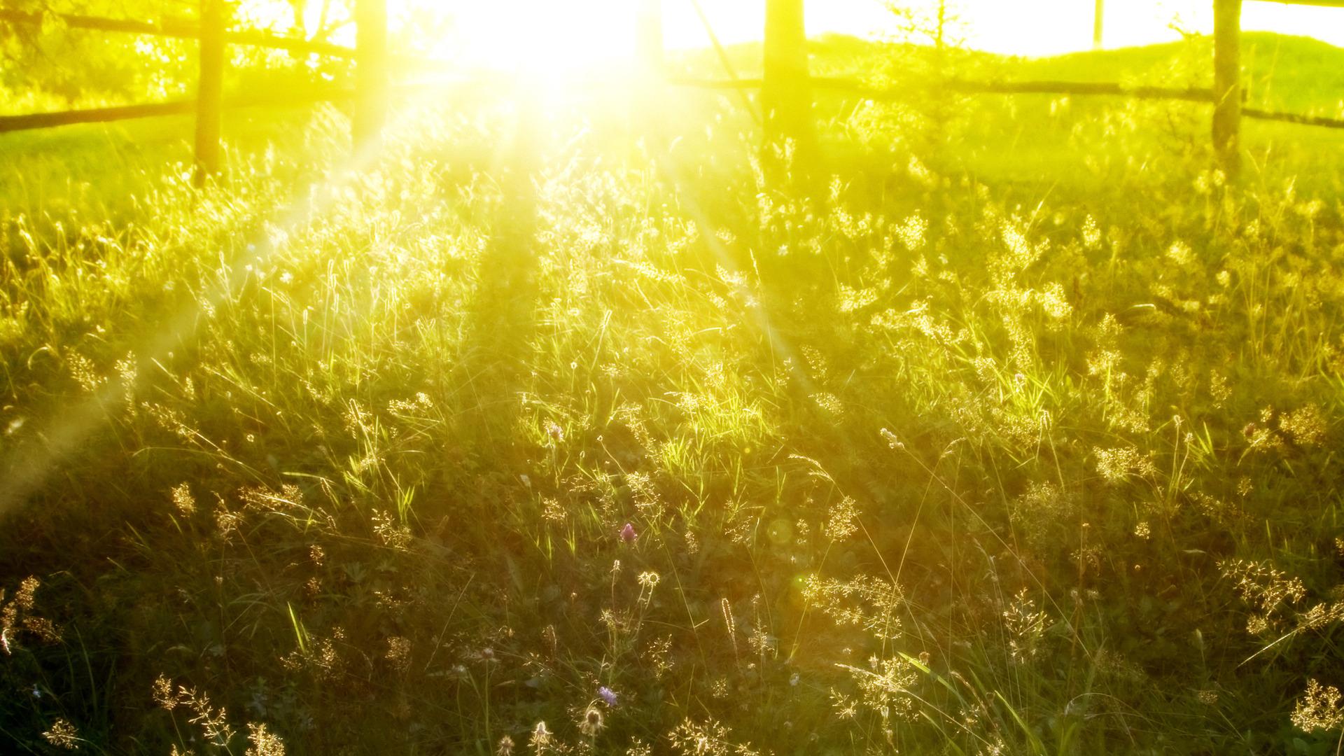 sun shine background