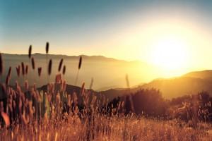 sunrise wallpaper background