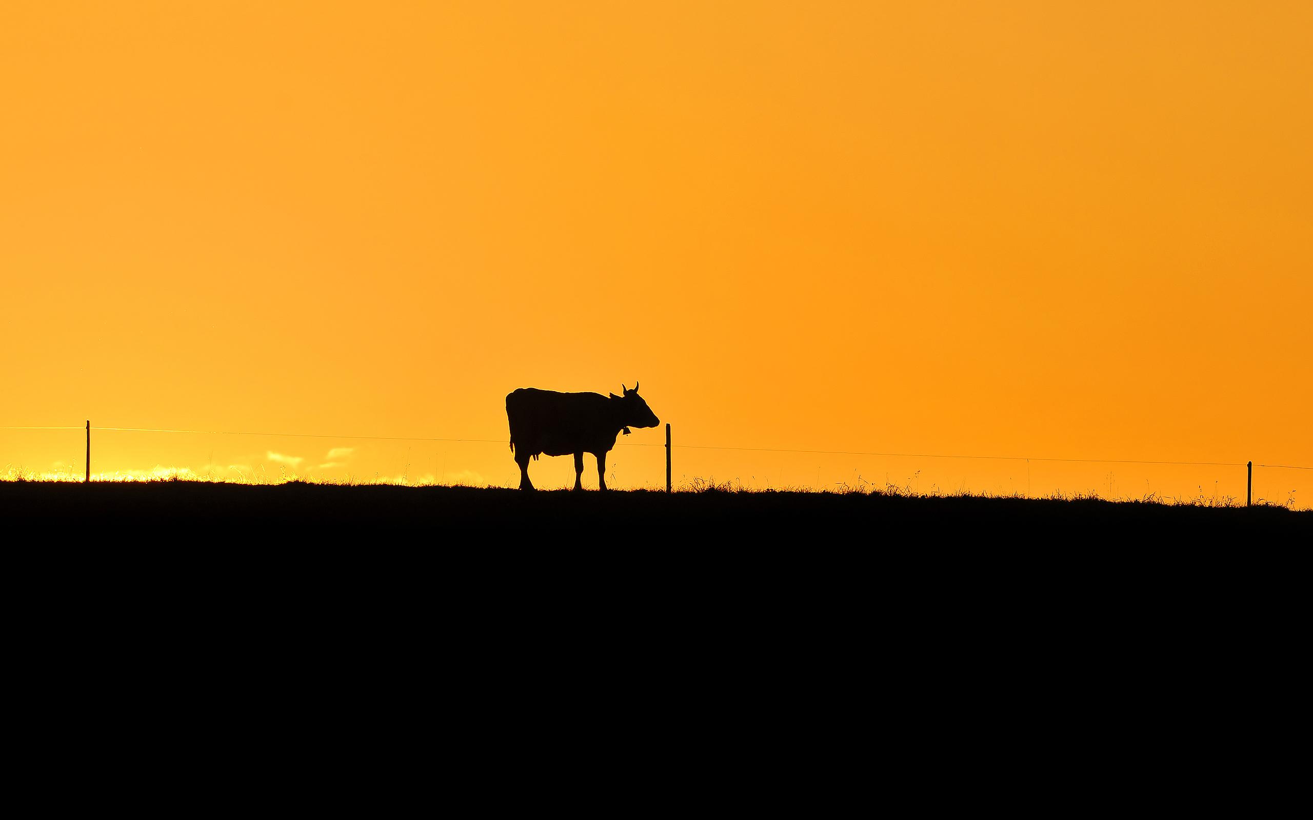 sunset images awesome