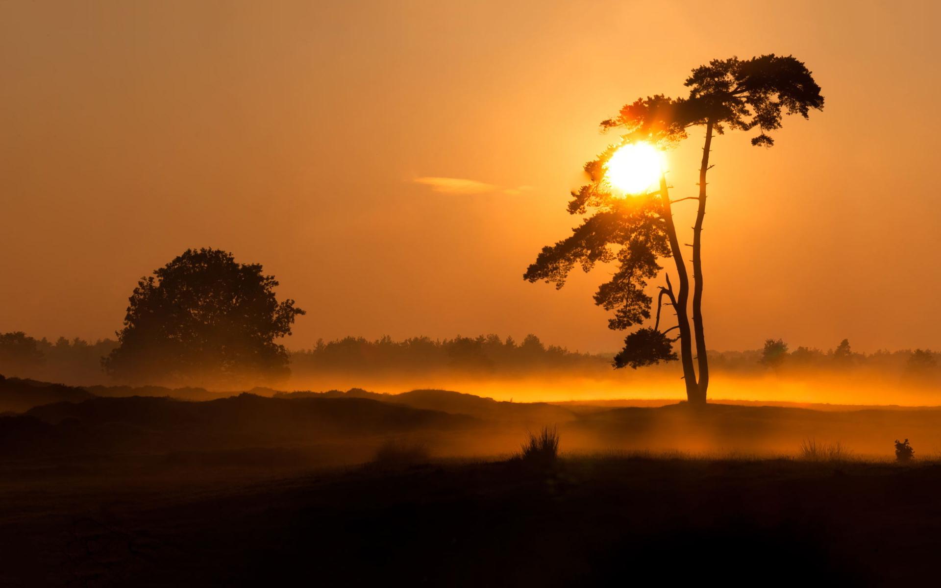 sunset images foggy