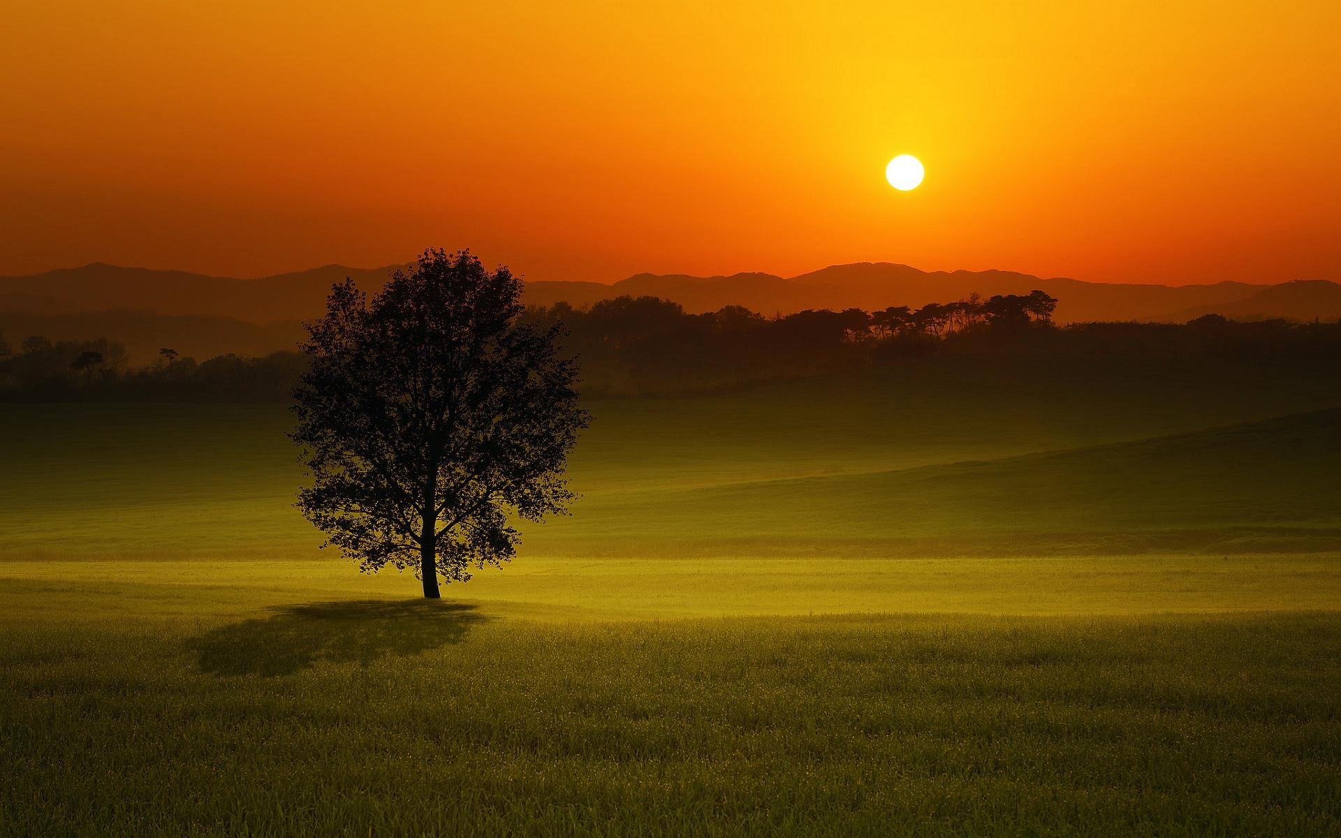 Sunset Wallpapers Evening - HD Desktop Wallpapers