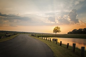 sunset wallpapers road