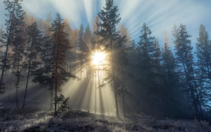 sunshine background images