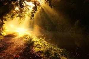 sunshine images