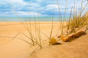 sunshine wallpaper beach sand