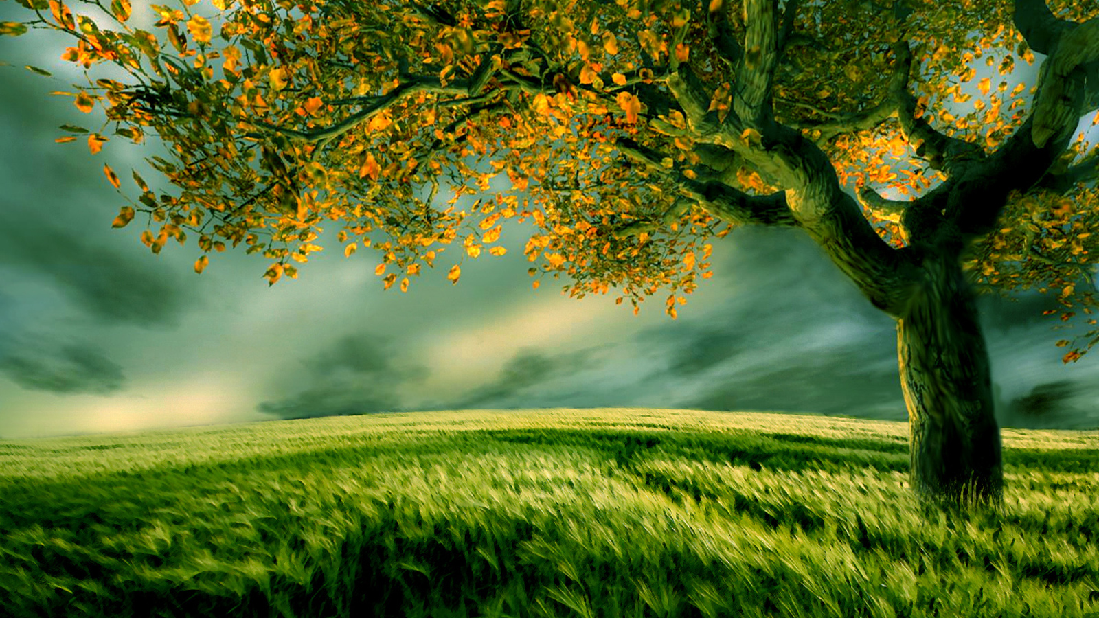 3d wallpaper trees - photo #1