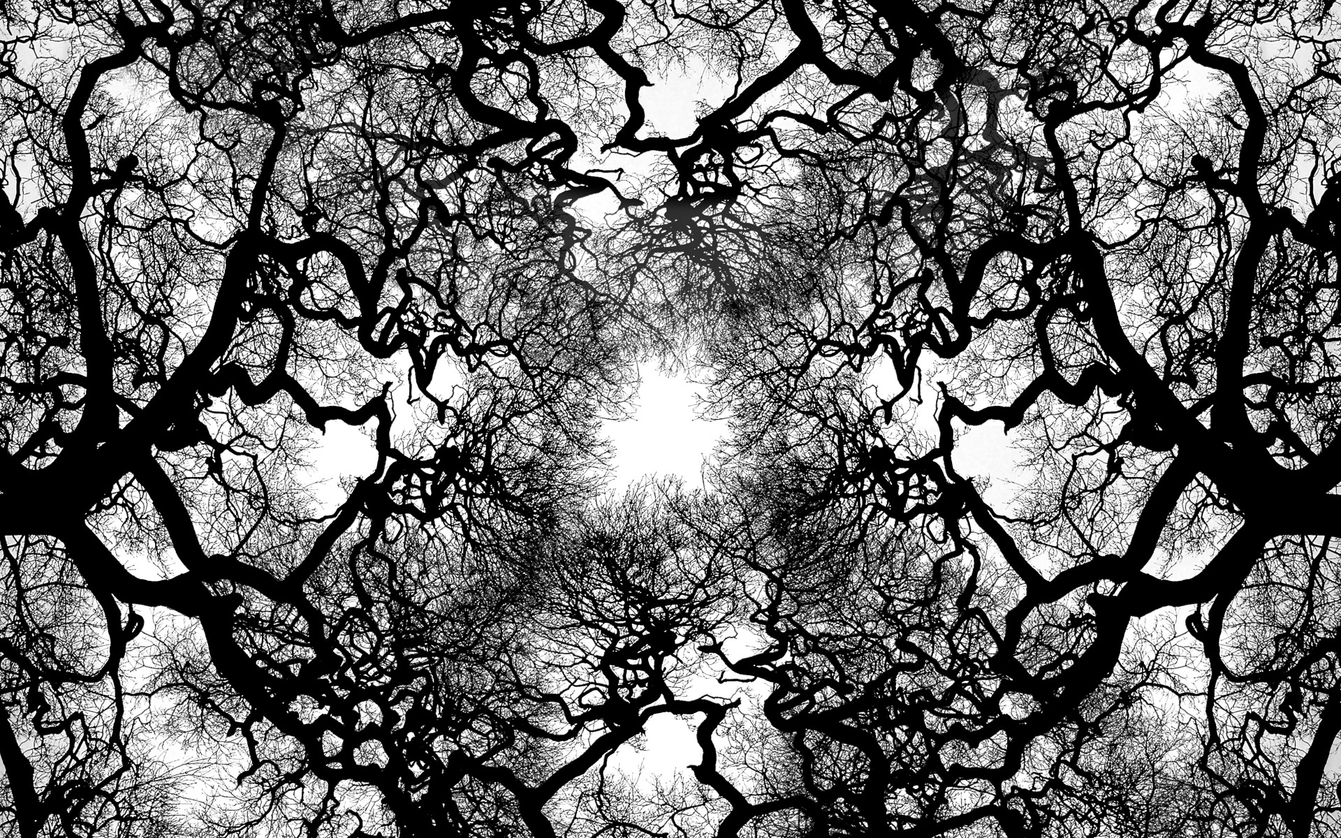 Tree Wallpaper Black