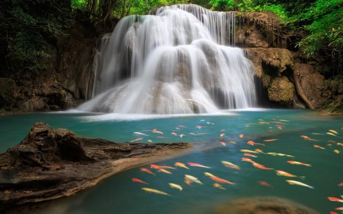 wallpaper in waterfall