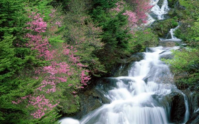 wallpaper waterfalls
