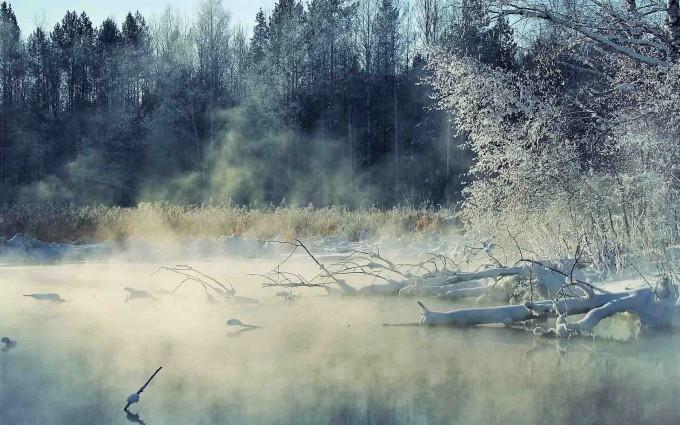 wallpapers fog winter