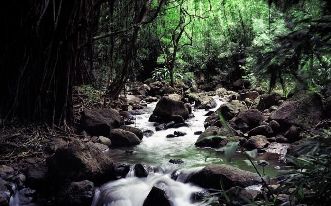 waterfall nature beautiful download