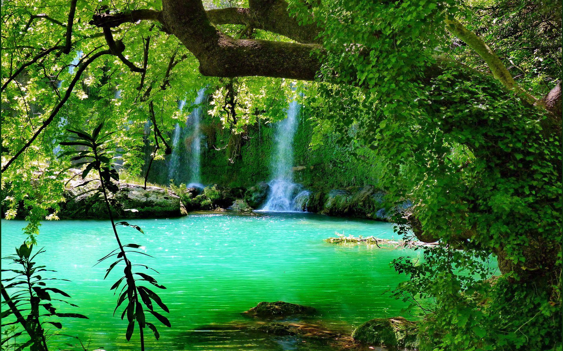 forest waterfall wide desktop background aa