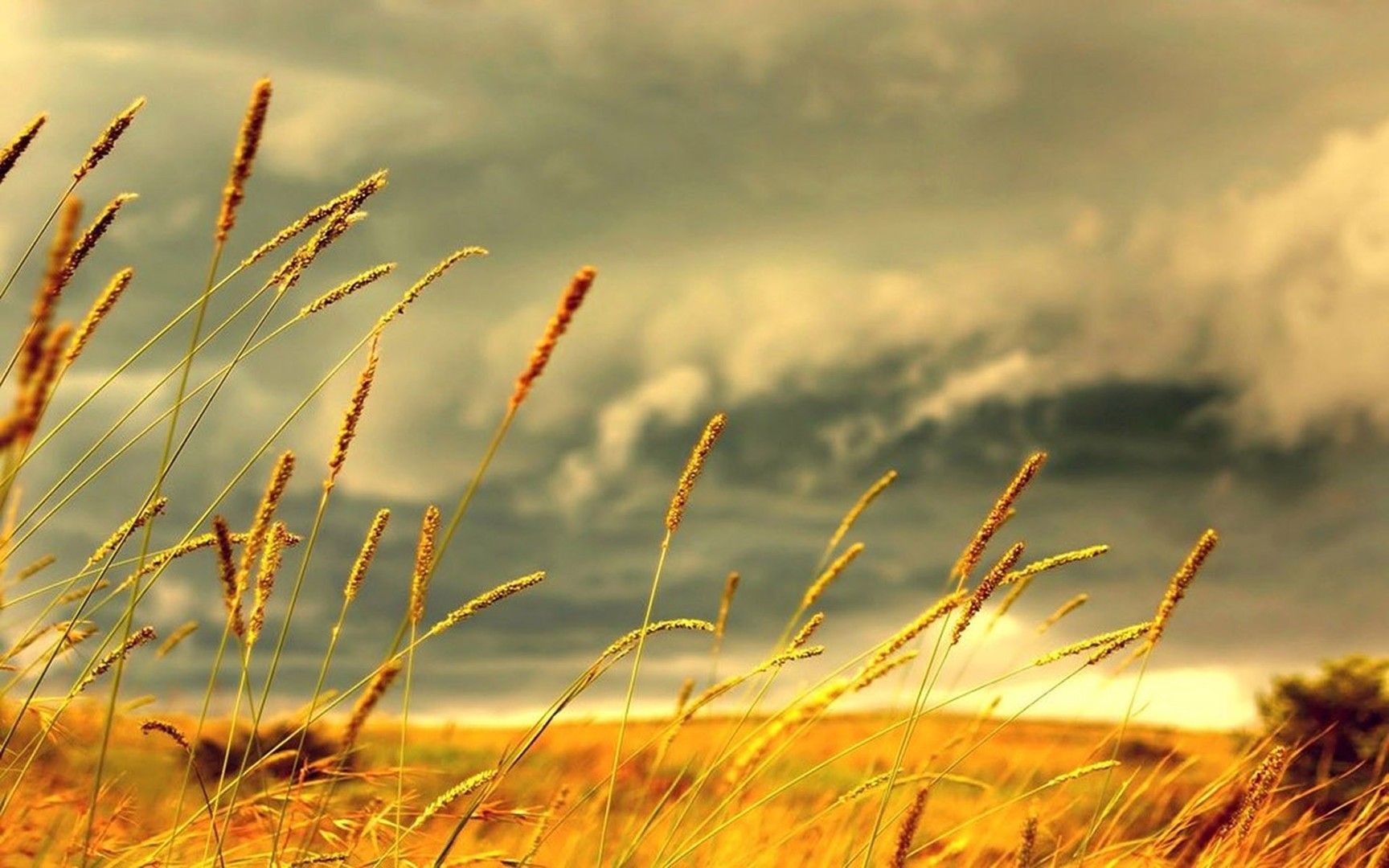 wind images hd