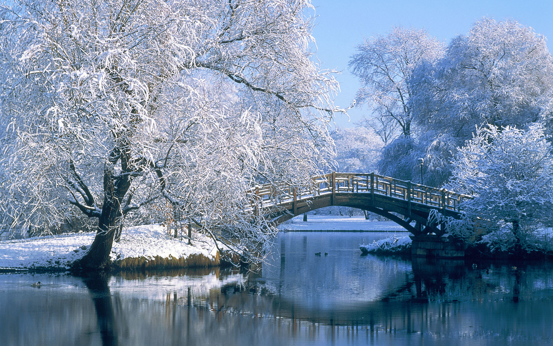 winter backgrounds bridge aa