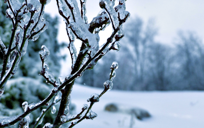 winter backgrounds hd