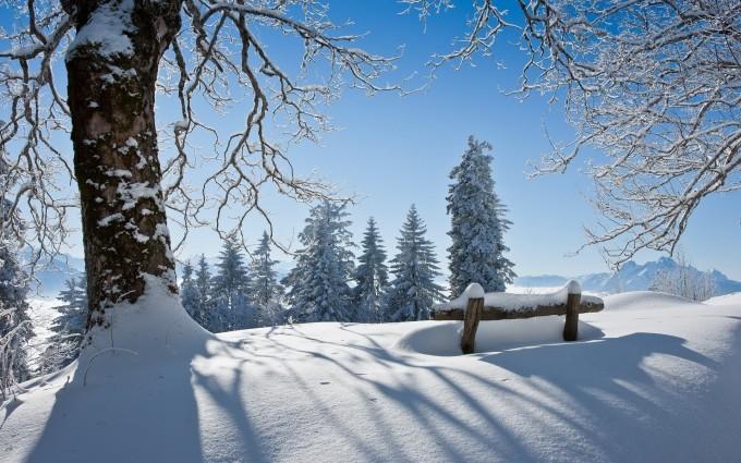 winter bench scenery