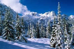 winter desktop background