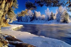 winter free wallpaper desktop