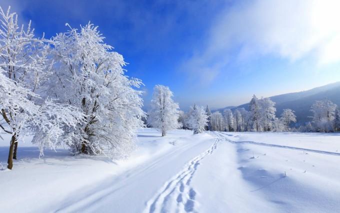 winter scenes wallpaper free