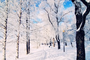 winter wallpaper scenes