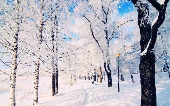 winter wallpaper scenes