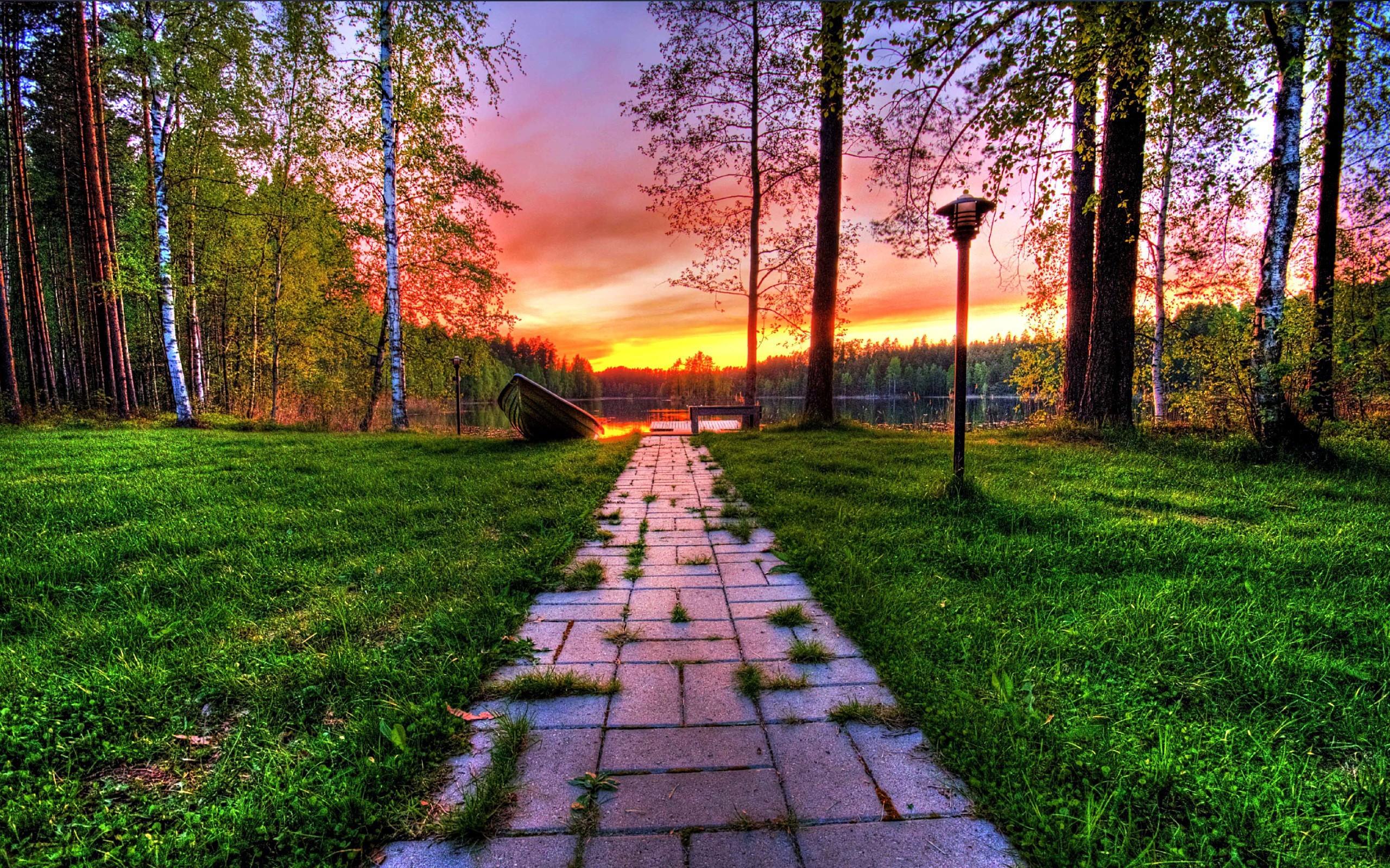 wonderful nature background