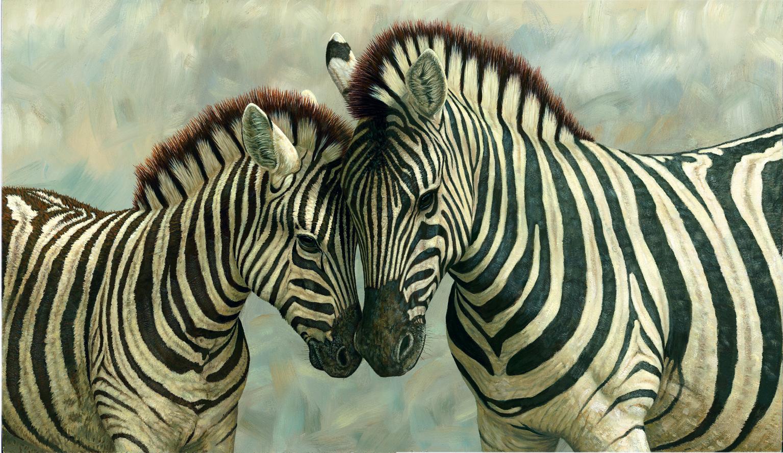 zebra image hd