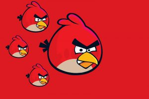 angry bird hd wallpaper