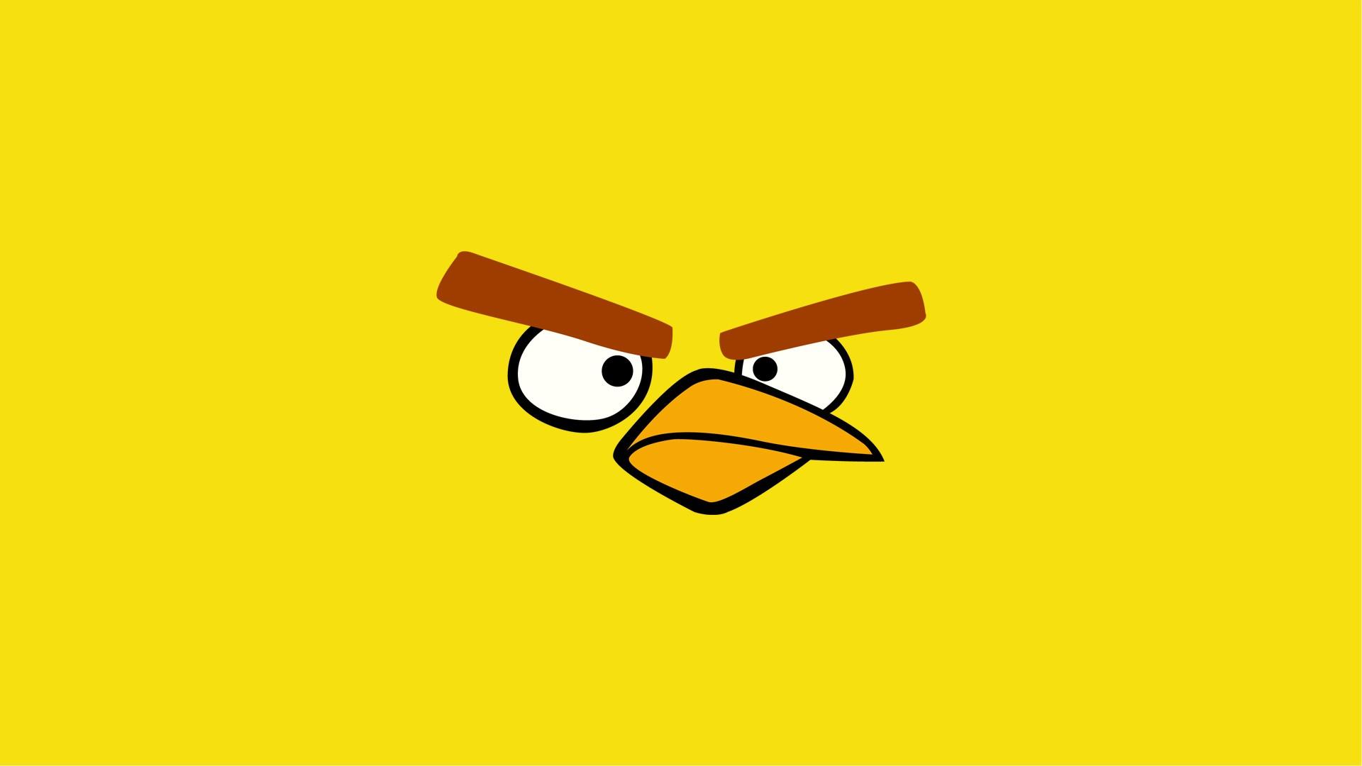 angry bird hd wallpaper A1