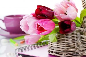 beautiful flower pictures A12