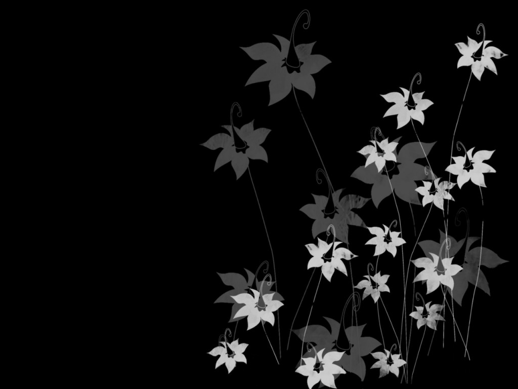 black and white flowers A5