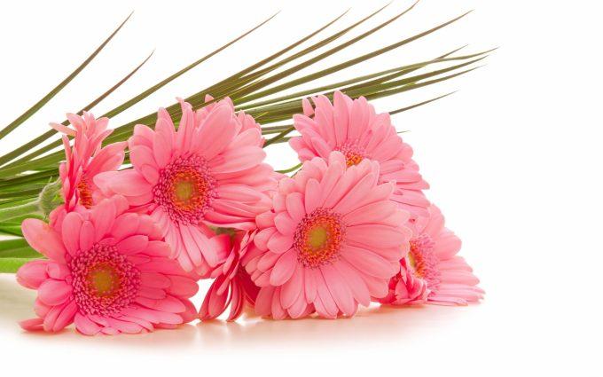 bouquet flowers image