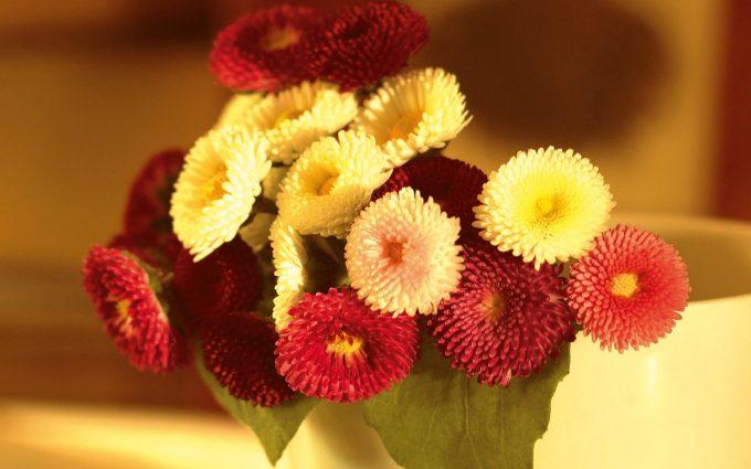 bouquet flowers picture