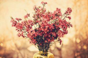bouquet flowers pictures