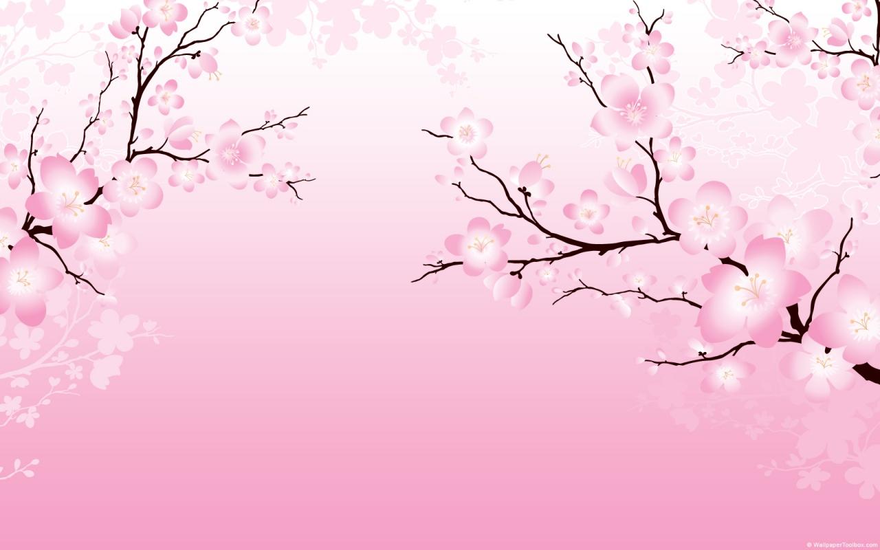 cherry blossom wallpapers desktop
