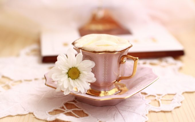 cup flower morning