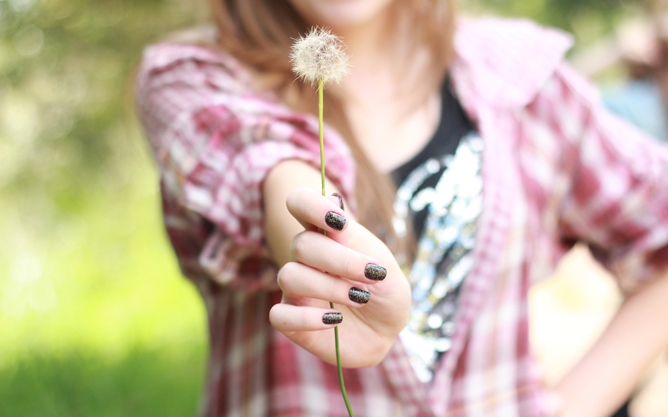 dandelion wallpaper girl