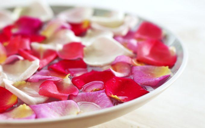 flowe petal wallpaper A1